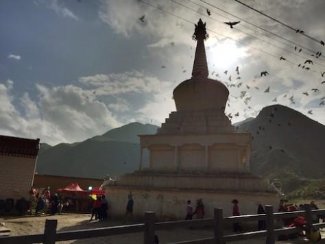 Around 20+ Tibetans kept circling around the white stupa at the corner of the monastery.