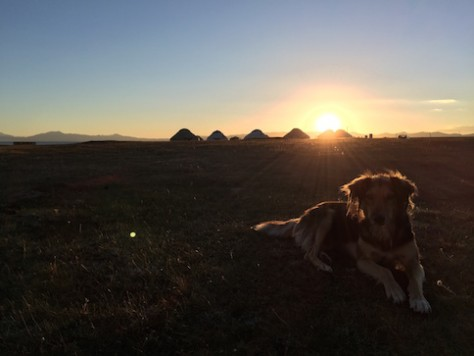Sunset with the yurts and shepherd dog by Song Kol Lake.