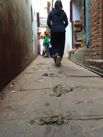 Need to look down where you walk in Varanasi, or else you might receive an unpleasant surprise!