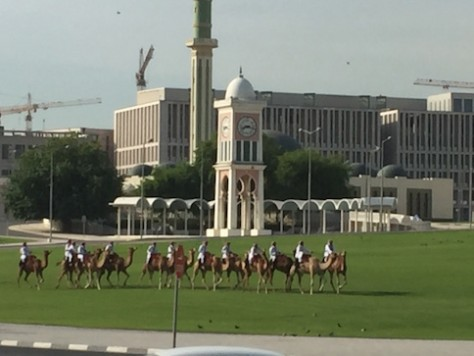 The police rode on camels when patrolling around the government building.