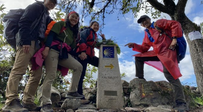 Walking Life through the Camino de Santiago Pilgrimage